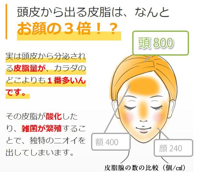 頭皮の皮脂量