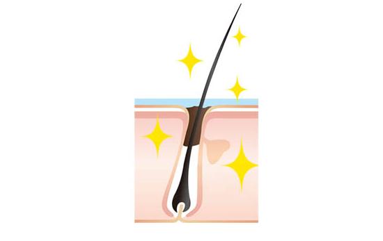 clean-scalp