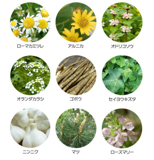 natural-component