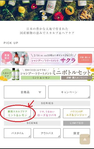 凛恋の購入手順3
